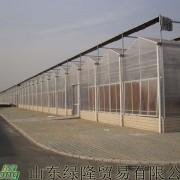 专业建造蔬菜温室大棚,日光温室,生态餐厅,经济型拱棚设计建设