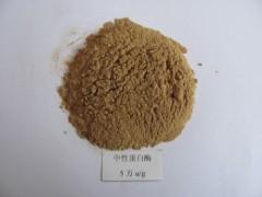 中性蛋白酶