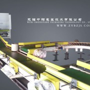 LCS药品包装生产线//全自动定量包装生产线//无锡中阳包装