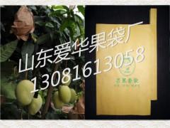 防春风芒果袋,台湾芒果套袋
