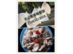 草莓套袋,小白袋,小蠟袋