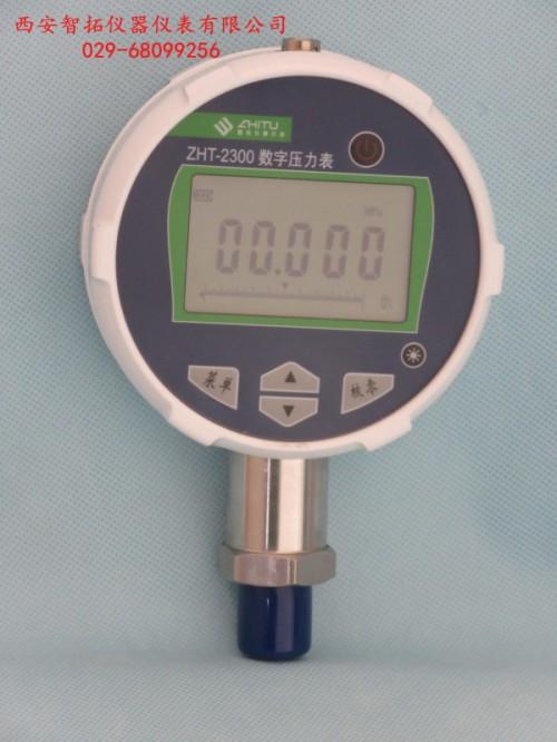 供应YS-600活塞压力计