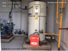双燃料采暖锅炉