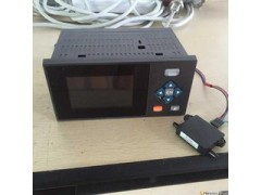 XSR10R无纸记录仪
