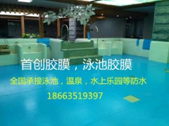 山东首创 泳池胶膜yk-1025