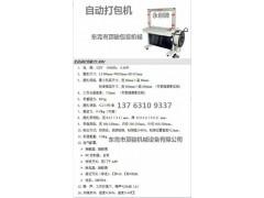 惠州惠东全自动打包机 惠阳惠城半自动打包机