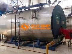 中正20吨WNS冷凝式燃气蒸汽锅炉