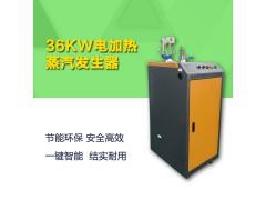 36千瓦电加热蒸汽发生器