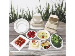 甘蔗浆托盘碗汉堡盒eco可降解 厂家纸包批发定制 一次性餐具