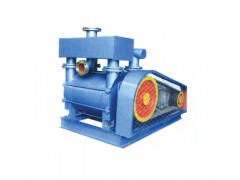 2BEA(2BE1)水环式真空泵