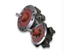 GLOBE活塞气动马达RM610-R52XXXA00